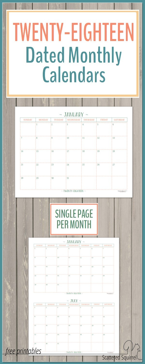 2018 Dated Monthly Calendars - Single Page Edition-Scattered Squirrel Monthly Calendar