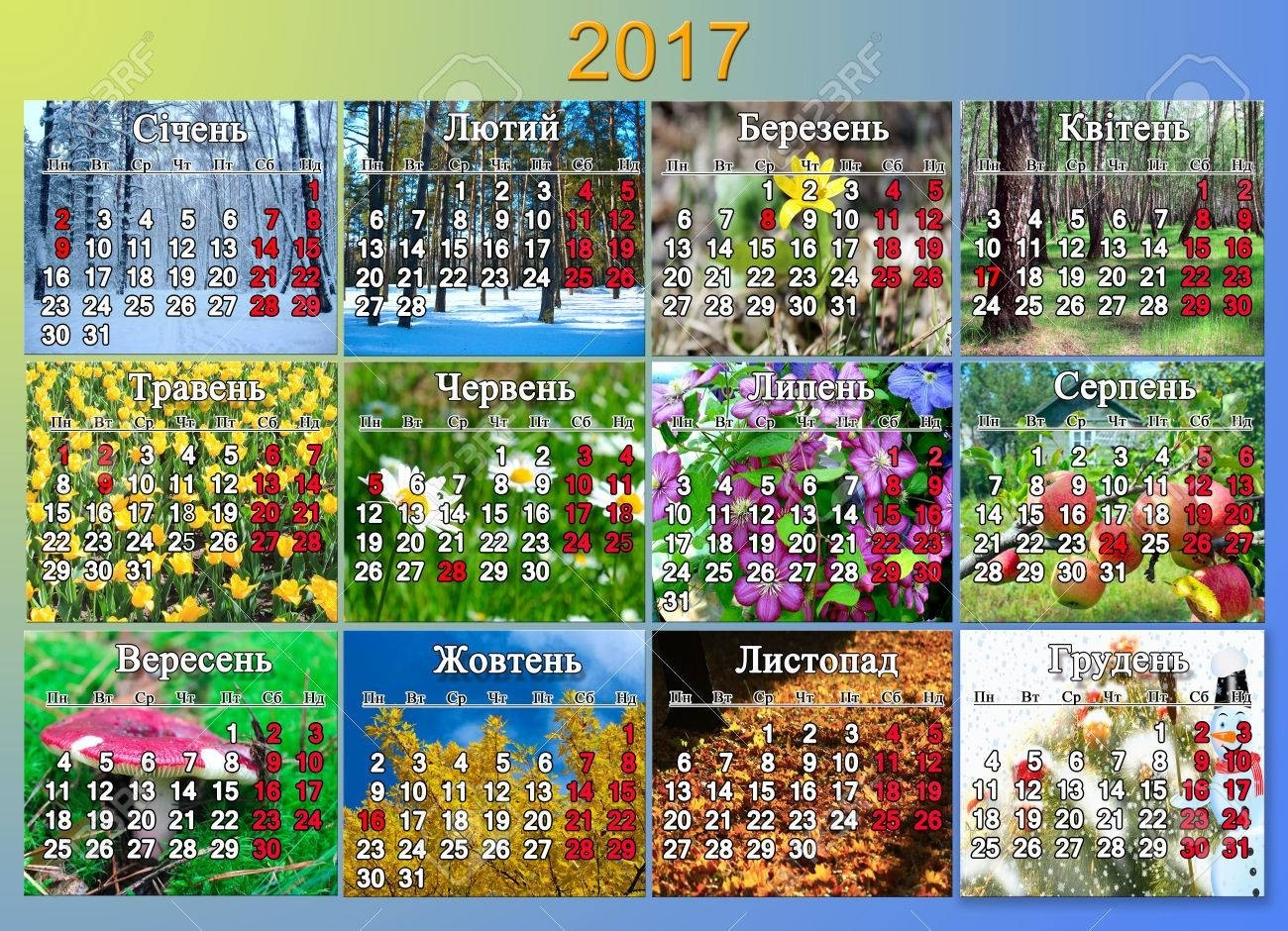 Calendar For 2017 With Indicating National Holidays In Ukrainian..-Calendar Indicating The Holidays