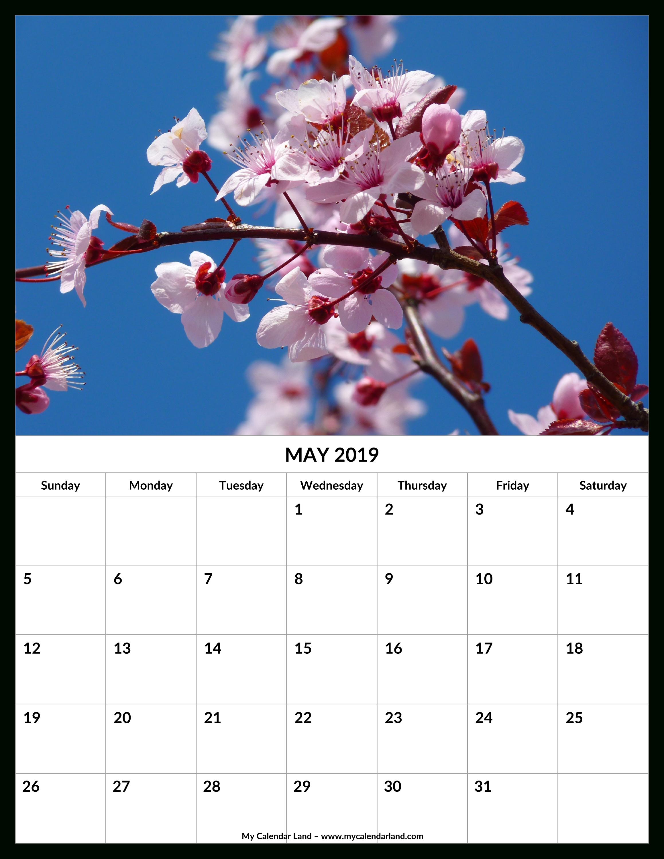 May 2019 Calendar - My Calendar Land-Beach Calendar With Blanks
