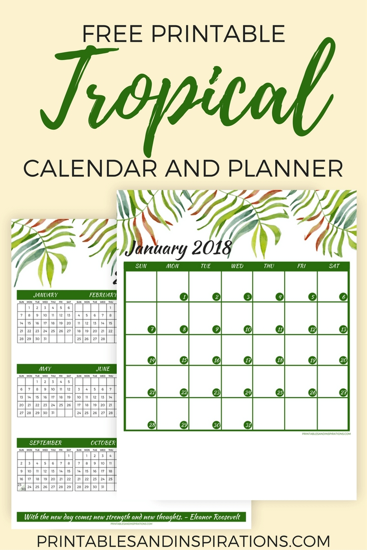 Free Tropical Green 2018 Calendar For A More Productive Year-Printable Monthly Calendar 5X8