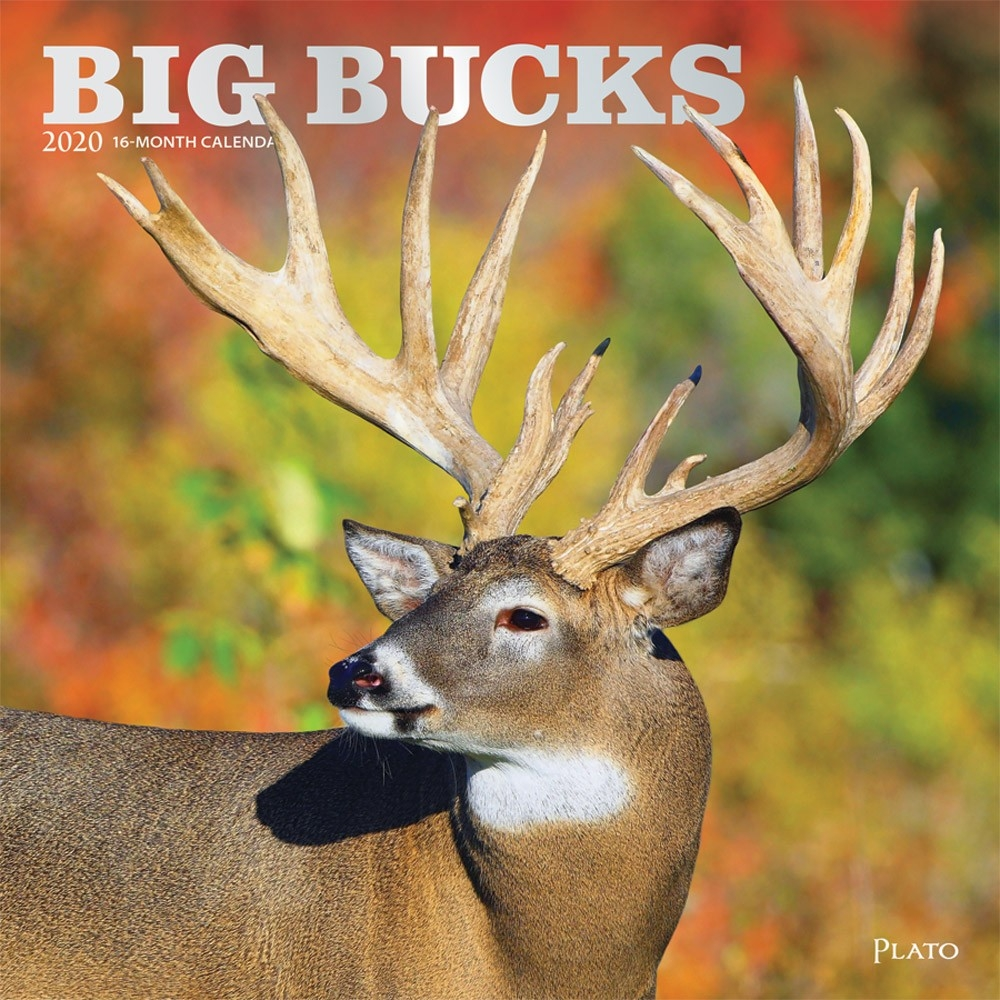 Big Bucks 2020 Square Wall Calendar By Plato | Plato Calendars-2021 Deer And Deer Hunting Rut Calendar For Michigan