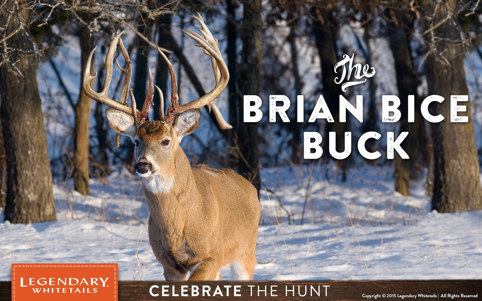 Brian Bice Buck - Legendary Whitetail'S Blog - Legendary Whitetail'S Blog-Midwest 2021 Whitetail Rut Predictions