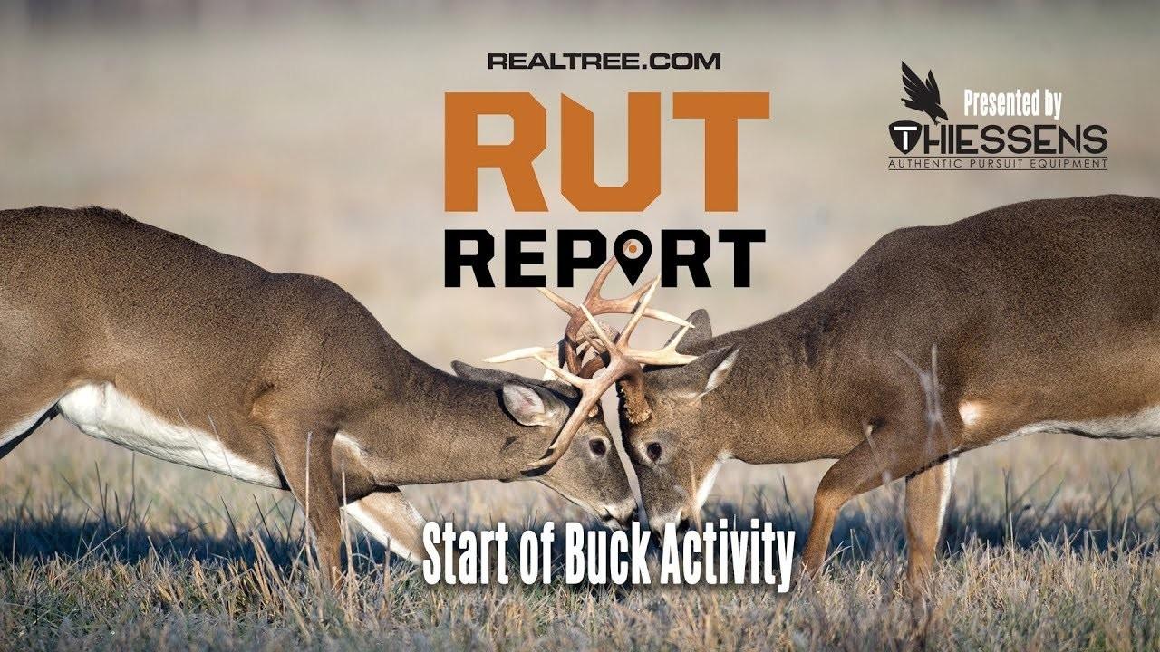 Deer Rut Predictions Illinois | Calendar Template Printable Monthly Yearly-Deer And Deer Hunting Rut Prediction 2021