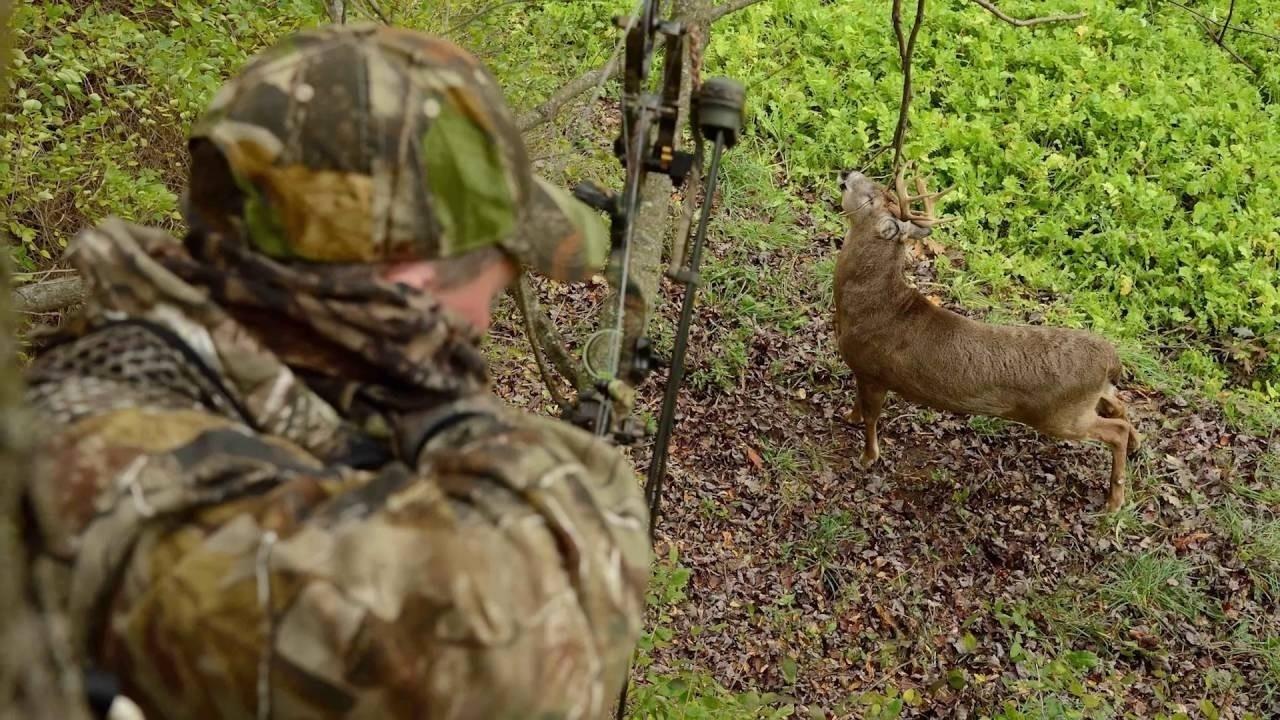 Deer Rut Schedule – Template Calendar Design-Southern Maryland Whitetail Deer Rut
