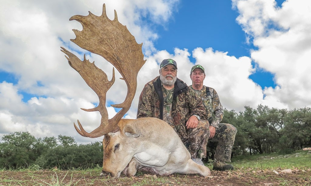 Fallow Deer Hunting | Wes Hdd-Whitetail Rut In Texas 2021