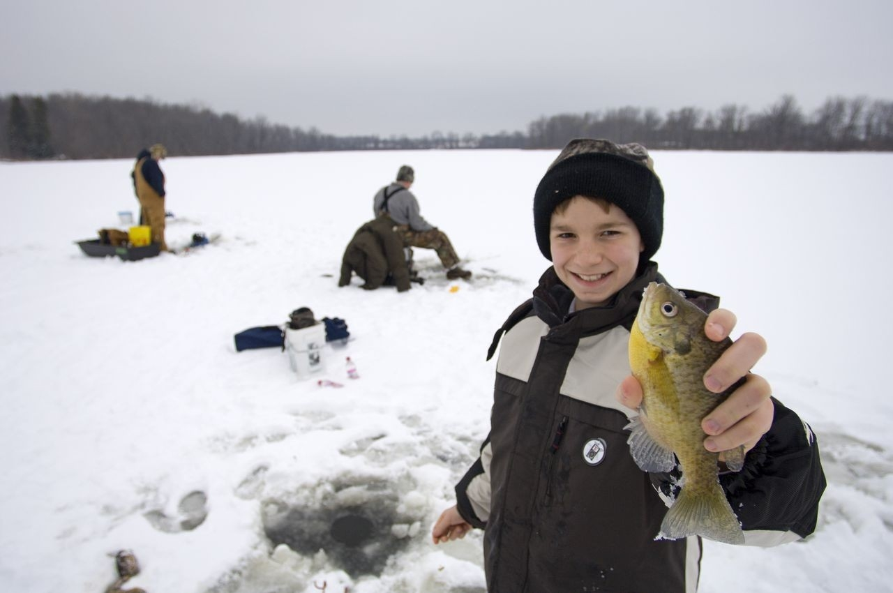 Michigan 2020 Hunting, Fishing Licenses Go On Sale Sunday - Mlive-2021 Deer Outlook For Michigan