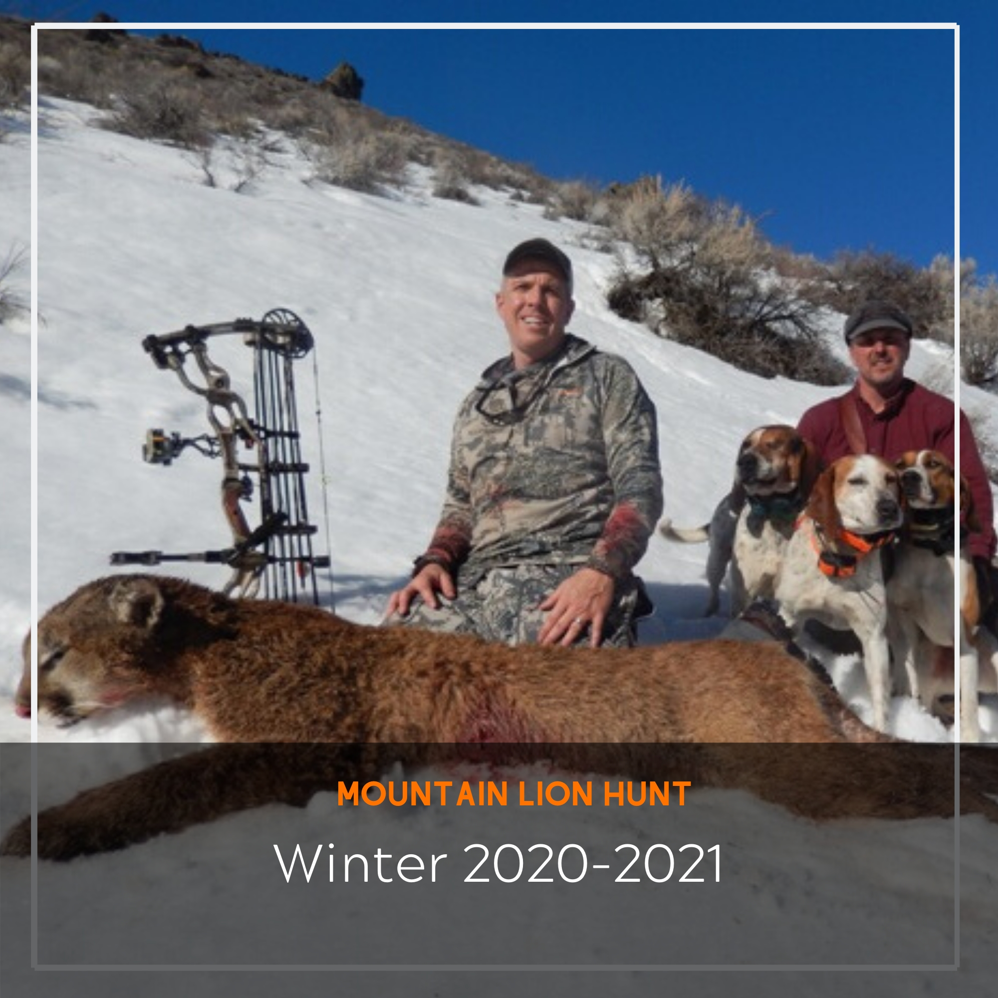 Mountain Loin Hunt- 2020-2021 | Arrived Outdoors-Dates For Indiana Deer Rut 2021
