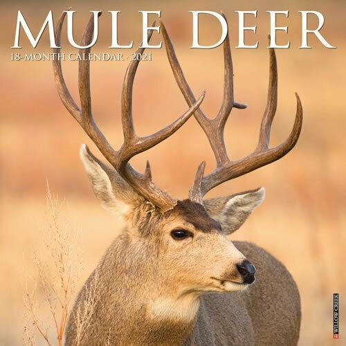 Mule Deer 2021 Wall Calendar (Free Shipping) | Ebay-2021 Whitetail Rut Calendar