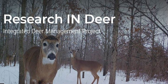 New Fishing Guide, Marsh Madness And More-Indiana 2021 Whitetailed Deer Rut Date