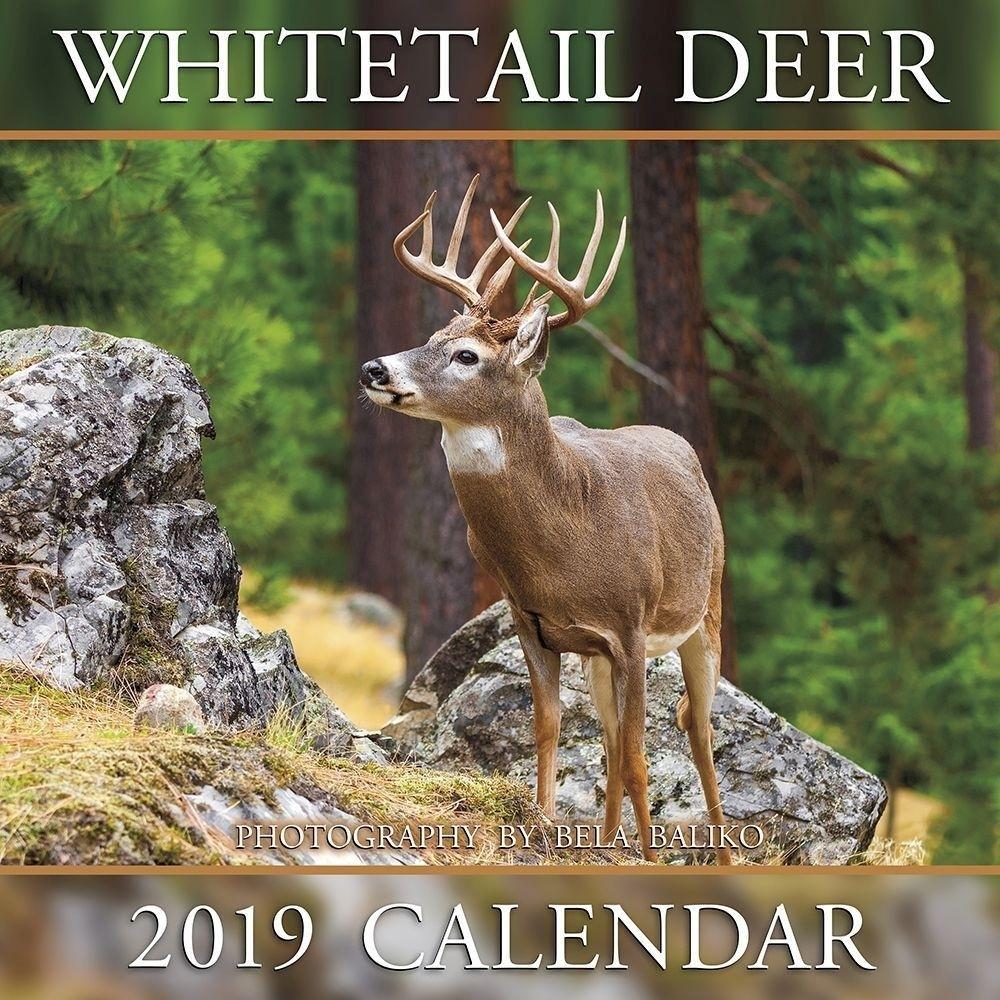 Shopdeerhunting 2020 Calendar Rut Forecast – Template Calendar Design-2021 Deer Rut Calendar