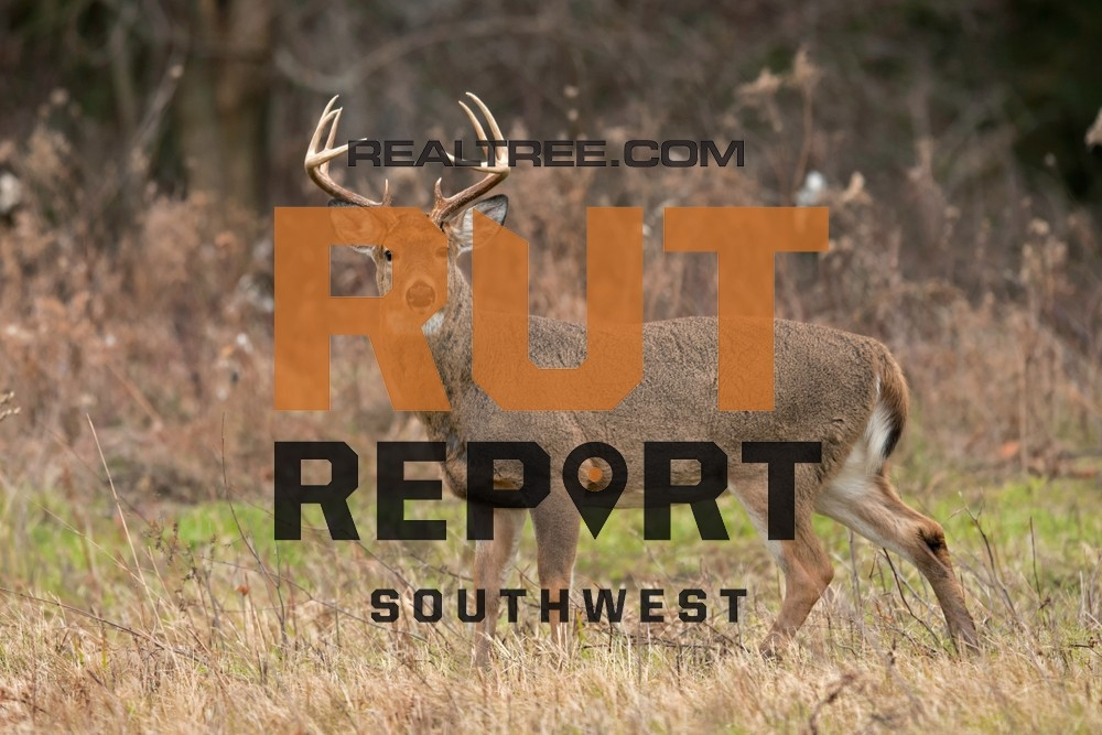 Southwest Rut Report: The Rut Is Winding Down | Realtree Camo-Deer And Deer Hunting Rut Forecast Nys