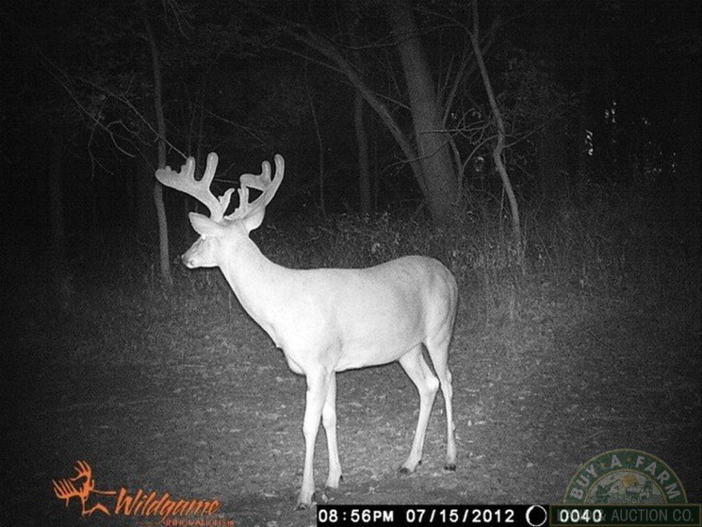 Take Illinois Deer Rut 2020 | Calendar Printables Free Blank-2021 Whitetail Rut Calendar