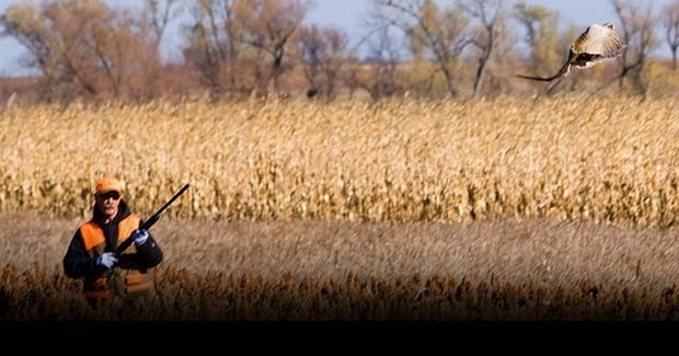 Uguide South Dakota Pheasant Hunting Guides, Outfitters & Lodges-2021 Deer Outlook For Michigan