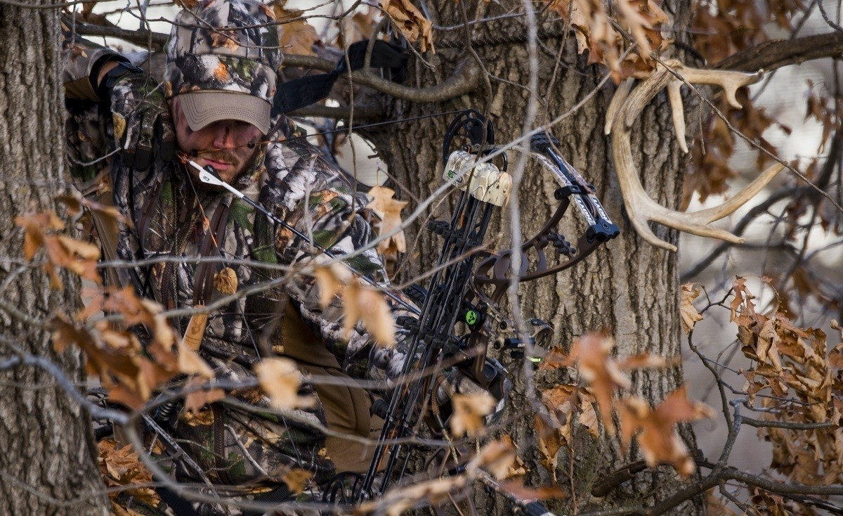 When Is Whitetail Rut In Georgia – Template Calendar Design-Southern Maryland Whitetail Deer Rut