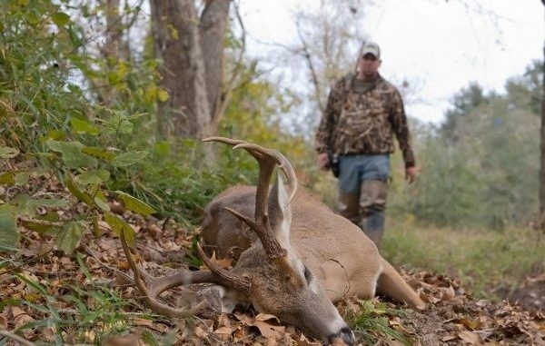 Why You Should Wait To Hunt Deer During The Rut-Louisiana Deer Rut Times