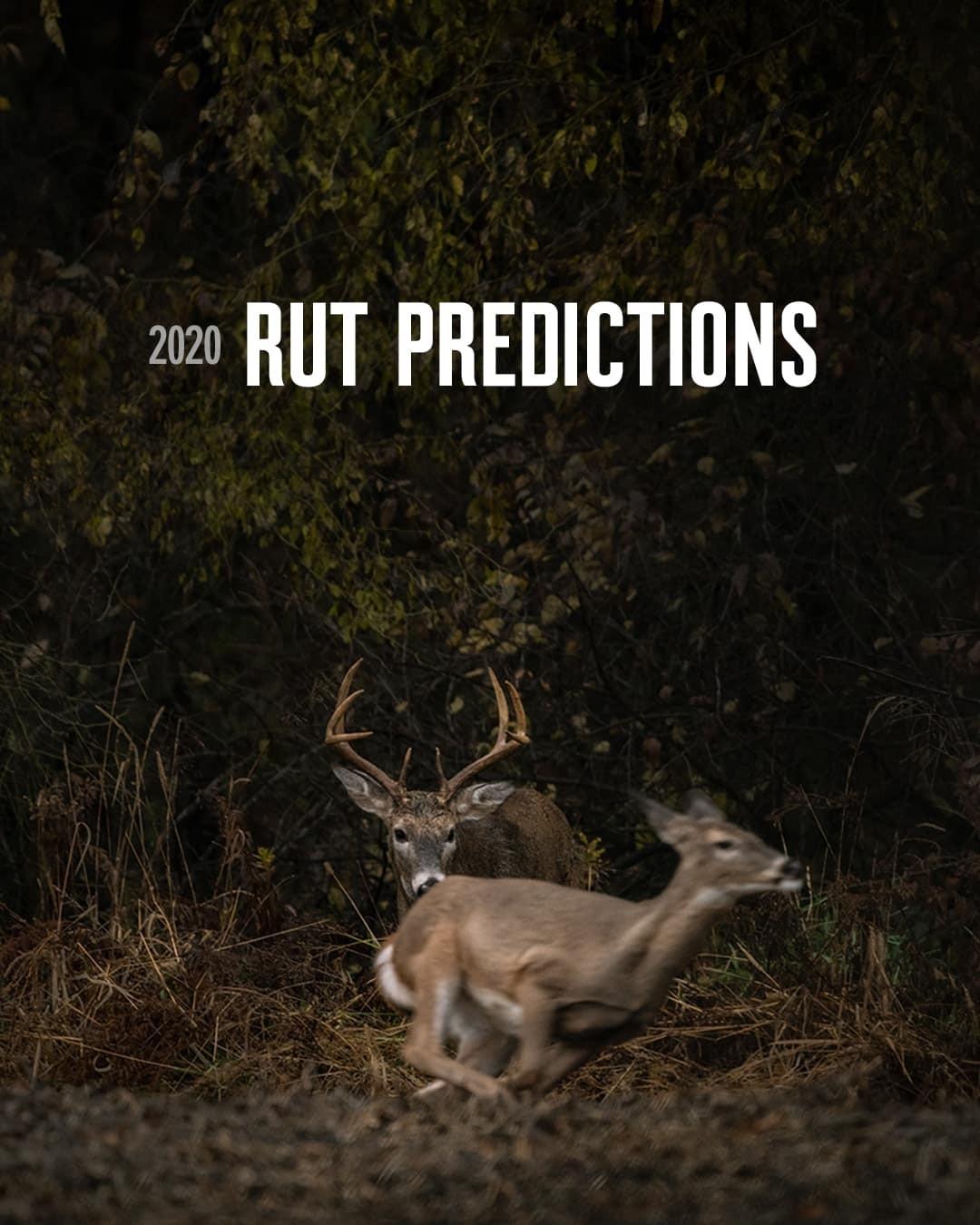 2020 Rut Predictions   Onx Maps-Peak Rut Predictions For 2021