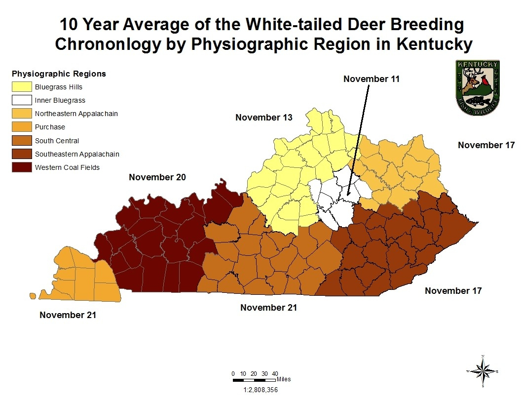 Art Lander'S Outdoors: White-Tailed Deer Rut Full Of Emotion-2021 Whitetail Rut Prediction In Kentucky