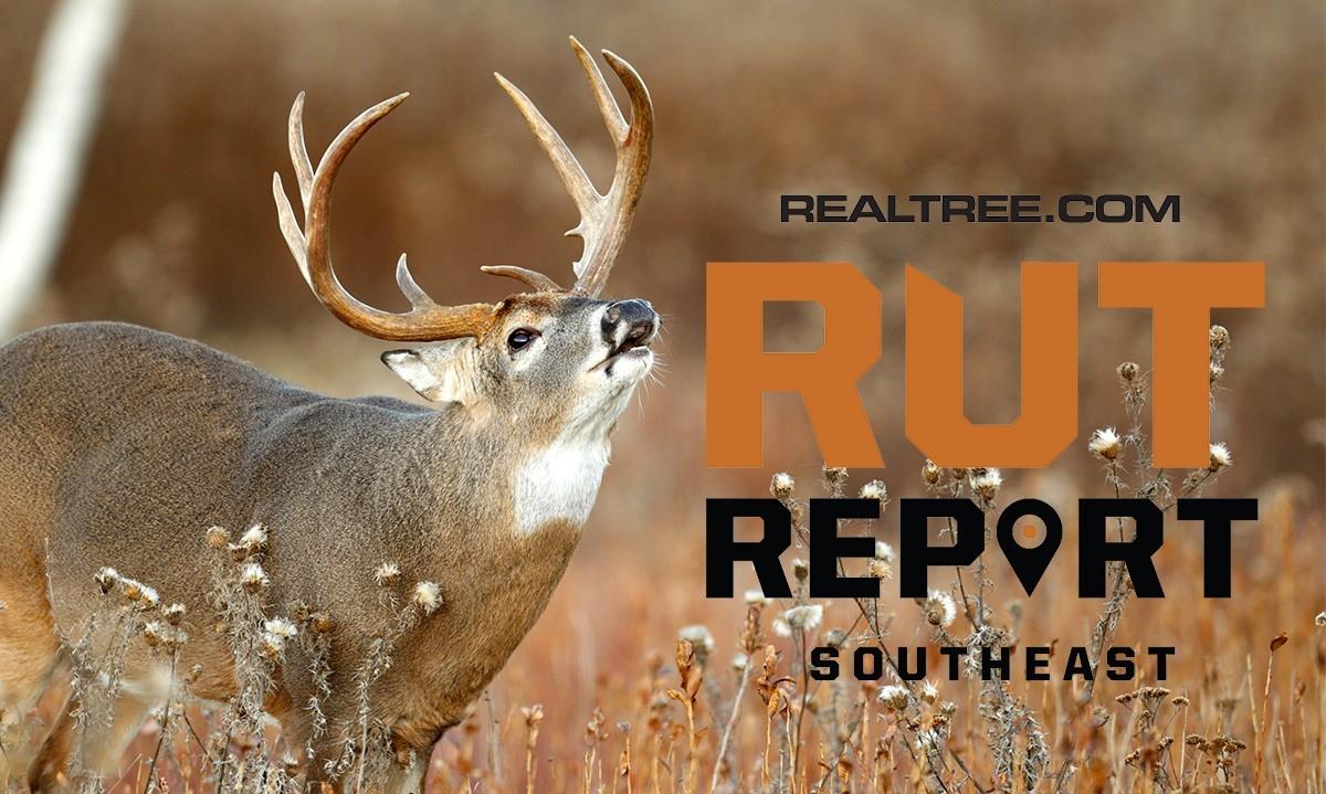 Dec. 13 Southeast Rut Report, 2020-2021 Va Rut Predictions