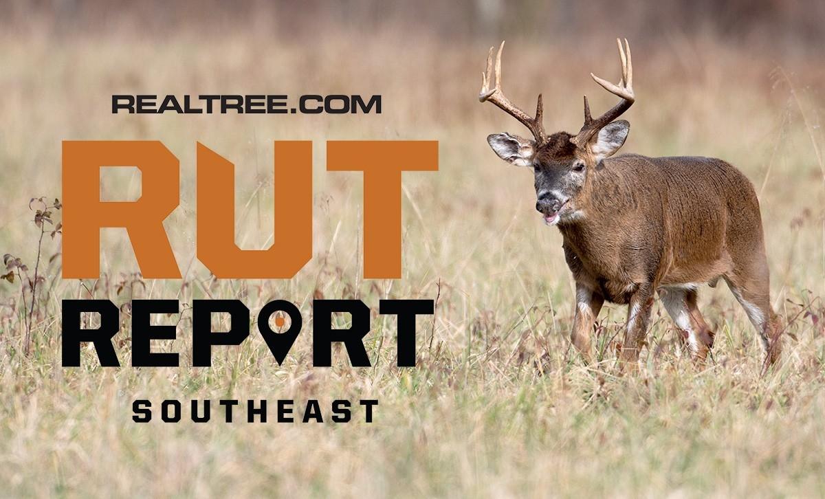 Nov. 5 Southeast Rut Report, 2020-2021 Va Rut Predictions