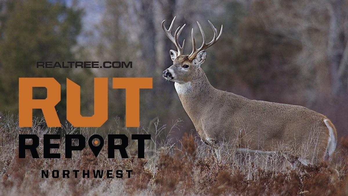 Nov. 6 Northwest Rut Report: 2020-Peak Rut Predictions For 2021