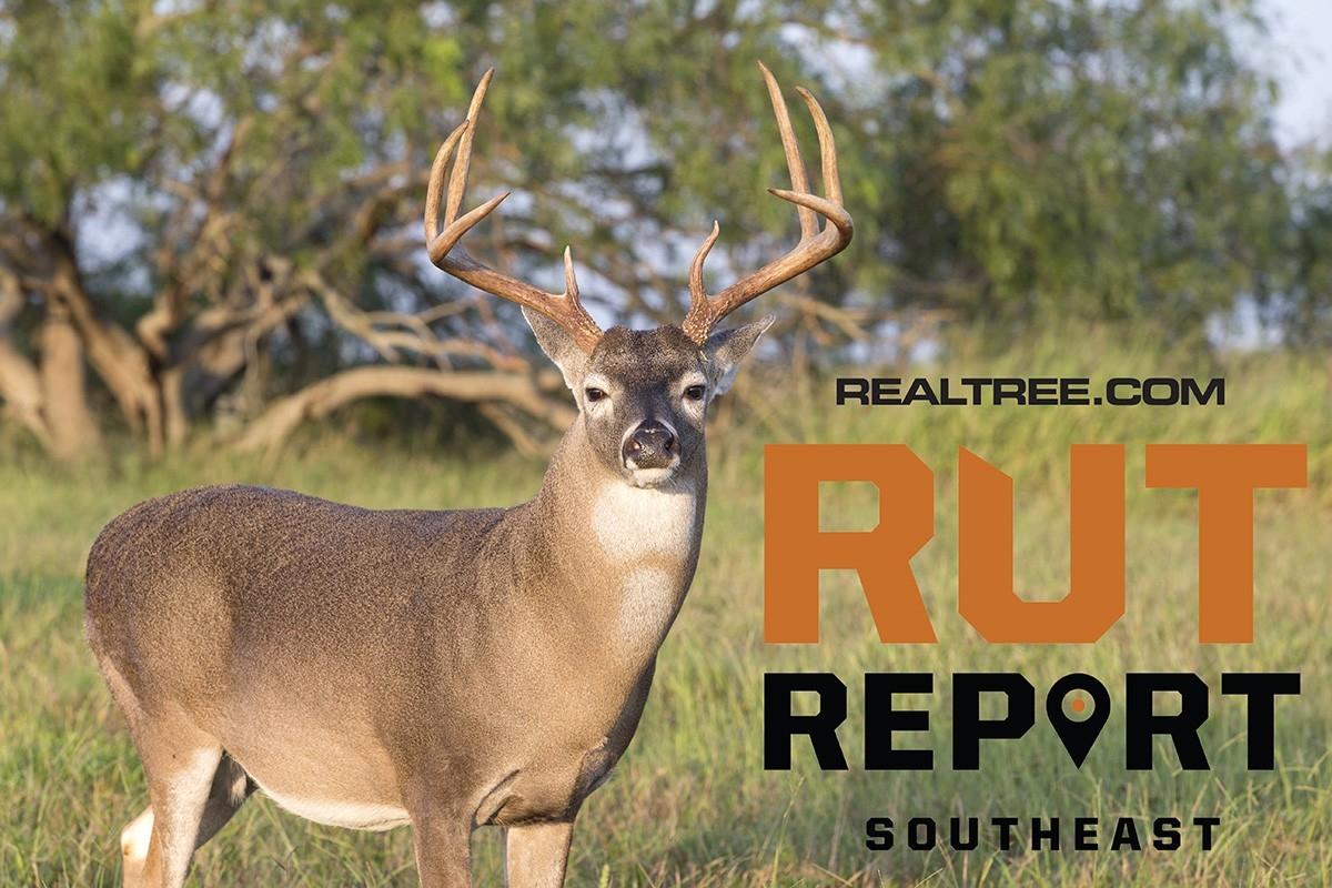 Oct. 23 Southeast Rut Report, 2020-2021 Va Rut Predictions