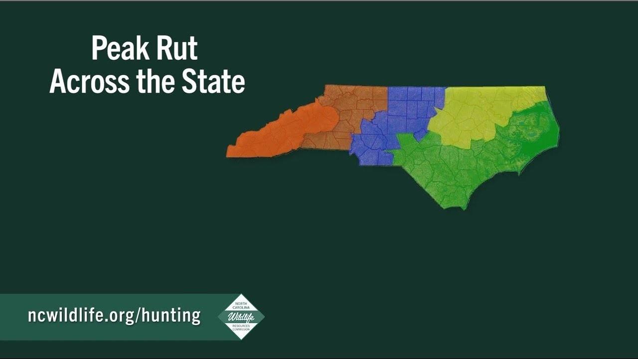 Peak Of The Rut Across North Carolina-North Carolina Rut Predictions 2021