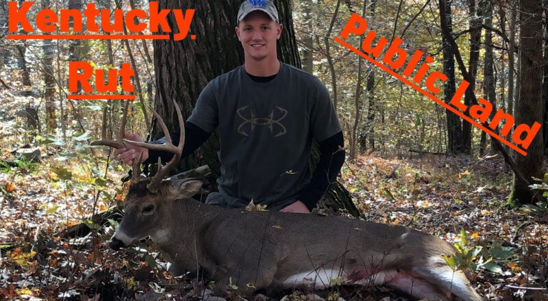 Deer Rut For Ky 2021 | Calendar Printables Free Blank-Wisconsin 2021 Whitetail Rutting