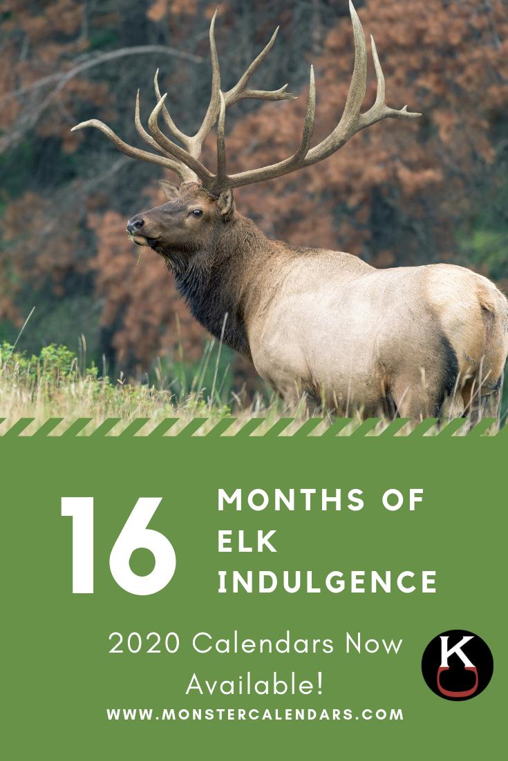 Deer Rut Calendar 2021 | 2022 Calendar-Illinois Deer Rut Prediction For 2021