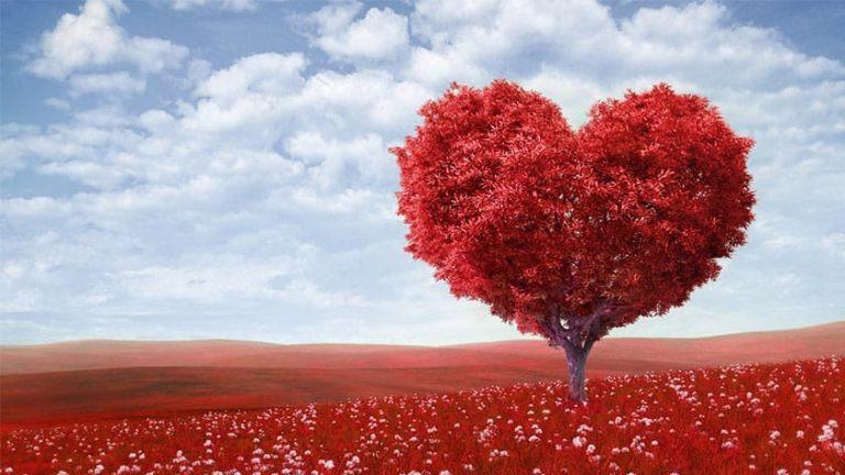 Valentine'S Day 2021 - National Awareness Days Calendar-National Wellness Calendar 2021